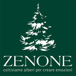 Zenone - Storytelling agenzia web marketing